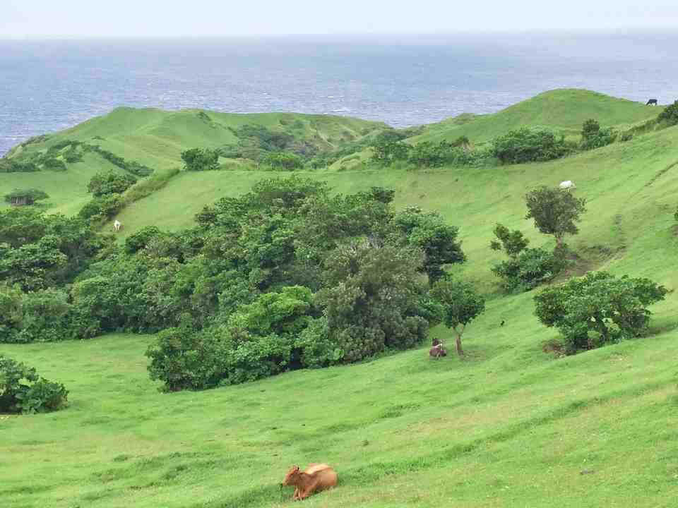 Vayang Rolling Hills